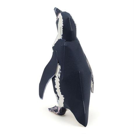 ケープペンギン:African Penguin(紙工作キット)