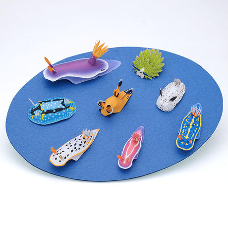 ウミウシ :Sea Slug(紙工作キット)