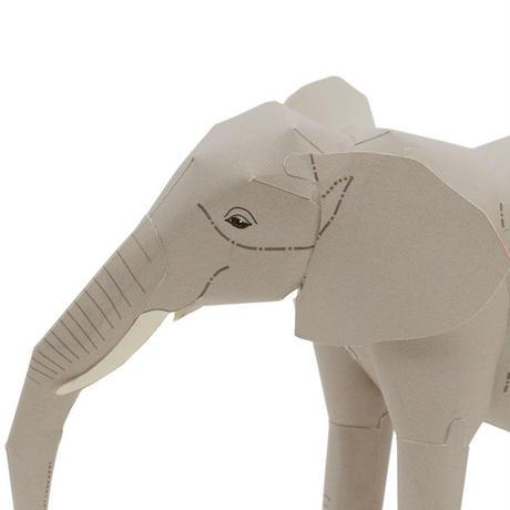 アフリカゾウ:African Elephant      (紙工作キット)