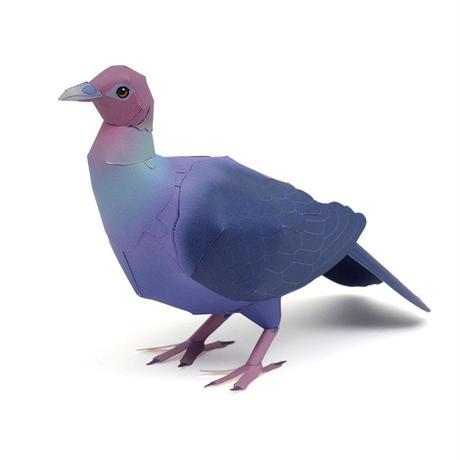 アカガシラカラスバト:Japanese wood pigeon(紙工作キット)