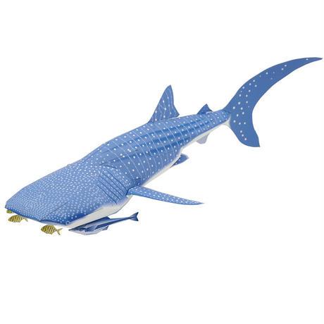 ジンベエザメ:Whale Shark(紙工作キット)