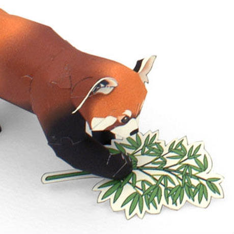 レッサーパンダ:Lesser Panda(紙工作キット)