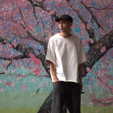 楓菊雲取模様