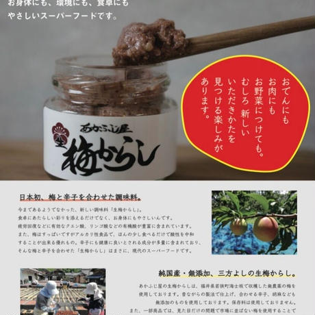 生梅からし45g