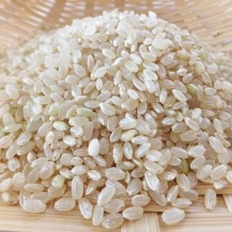 無化学肥料栽培 無農薬コシヒカリ 玄米 5キロ