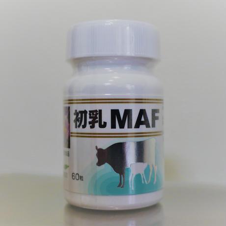 初乳MAF 60カプセル