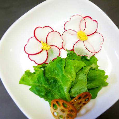おまかせサラダセット(レタスおまかせ 6袋+ラディッシュおまかせ1袋)