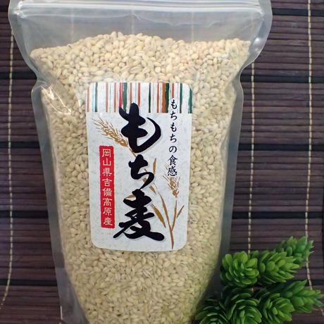 岡山県吉備高原産 もち麦 1kg