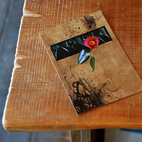 ポストカード5枚セット(書花アーティスト作品)