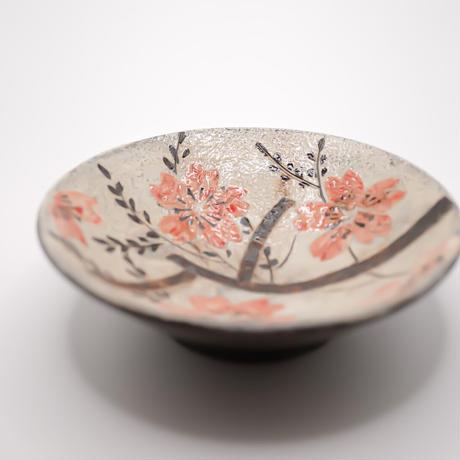 和紙焼 桜のお皿
