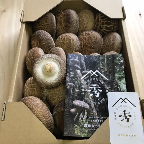 原木生椎茸 hagi(約1㎏入り1箱)