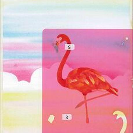 B5【フラミンゴ】