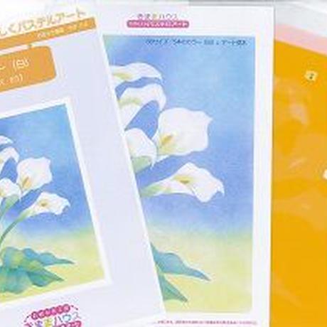 B5【5本のカラー(白)】