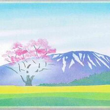 B5【一本桜】