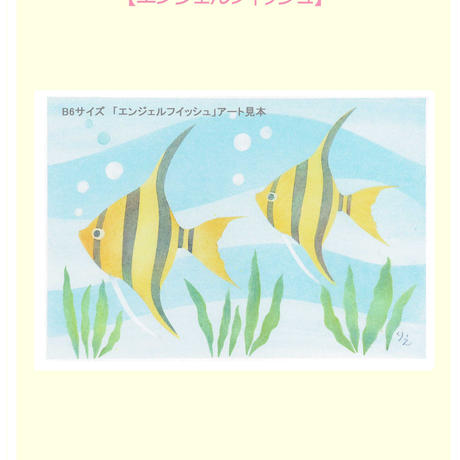 B6【エンゼルフィッシュ】