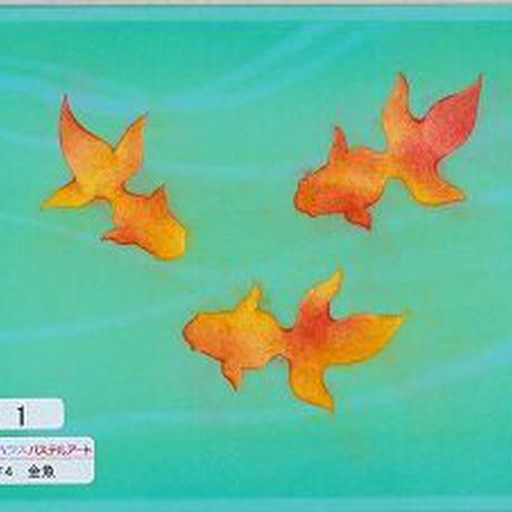 B6【金魚】