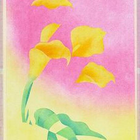 B5【5本のカラー(黄色)】