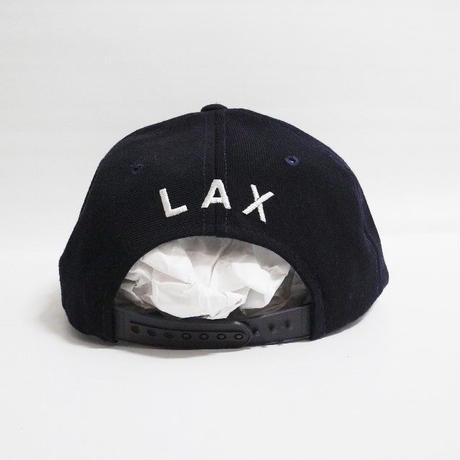 American Airlines CAP LAX