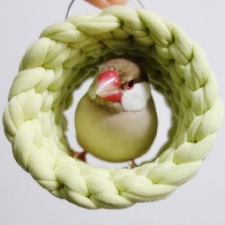 ホヨヨ ボール −lime green−