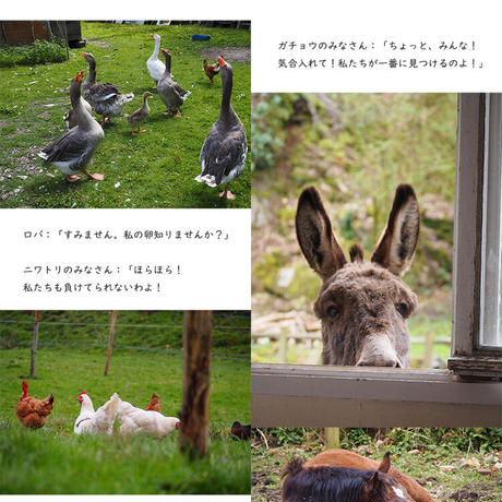 WEB雑誌 2021年春号 ~動物との暮らし~