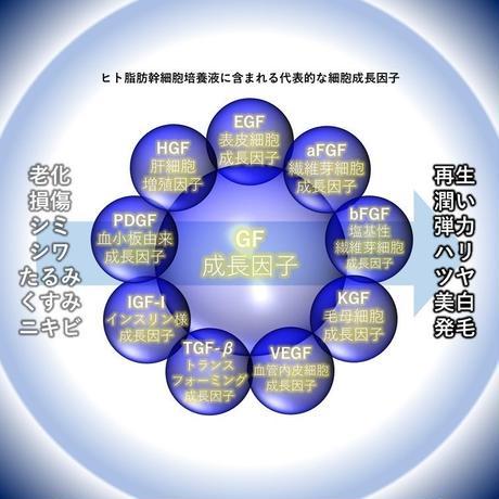 5becd45a5f78666a1e00013a