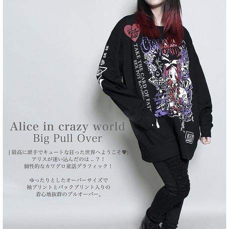 【SEXPOTReVeNGe】ALICE IN CRAZY WORLD BIG プルオーバー【SB26022】