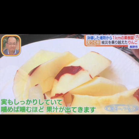 【紅玉】9キロ/約36~50玉/全国一律で送料無料/皮ごと食べれるりんご/減農薬/産地直送/お取寄せフルーツ/さわやかな酸味/煮崩れしにくいのでお菓子作りにもお勧め/#復興りんご