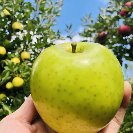 【王林】5キロ/約14~23玉/全国一律で送料無料/皮ごと食べれるりんご/減農薬/産地直送/青リンゴの代表選手/甘くてみずみずしくジューシー/赤リンゴとは違った風味を楽しめます