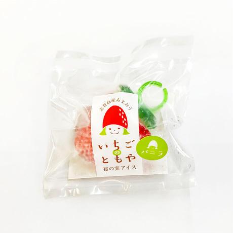苺の実アイス  ~バニラ 10個入り~ 【送料無料】