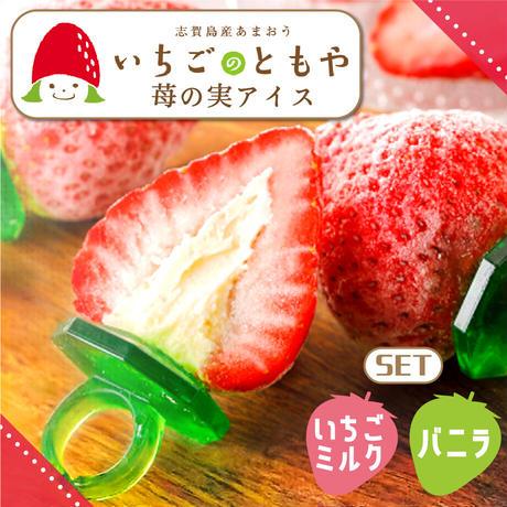 苺の実アイス  2種  10個入り 【送料無料】