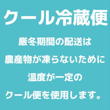 [クール便]北見黄爵「とうや」 10kg【北海道 JAきたみらい産】