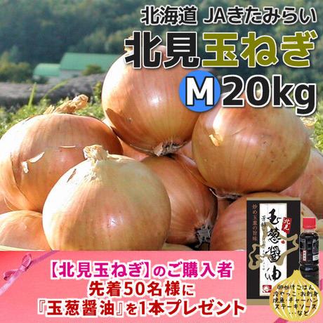北見玉ねぎ M20kg【北海道 JAきたみらい】