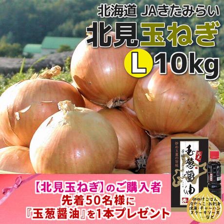 北見玉ねぎ L10kg【北海道 JAきたみらい】
