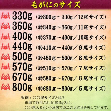 期間限定 北海道 雄武産 海明け 毛ガニ 約360g 1杯