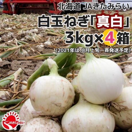 北見産たまねぎ「真白」 3kg×4箱【北海道 JAきたみらい】