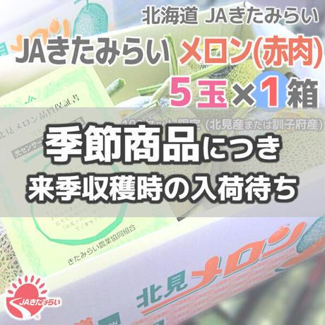 JAきたみらい メロン(赤肉) 5玉×1箱【北海道 JAきたみらい】