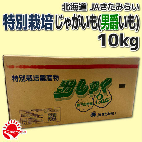 特別栽培じゃがいも(男爵いも) 10kg【北海道 JAきたみらい】