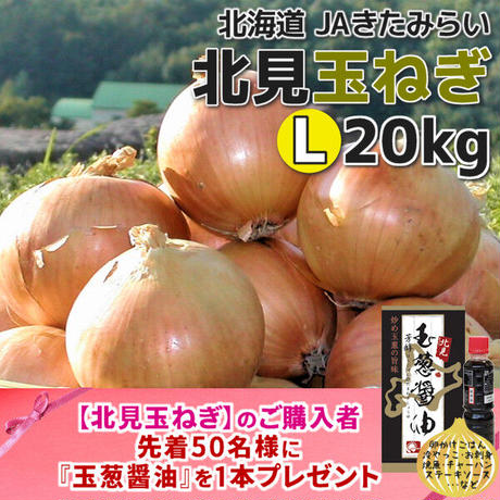 北見玉ねぎ L20kg【北海道 JAきたみらい】