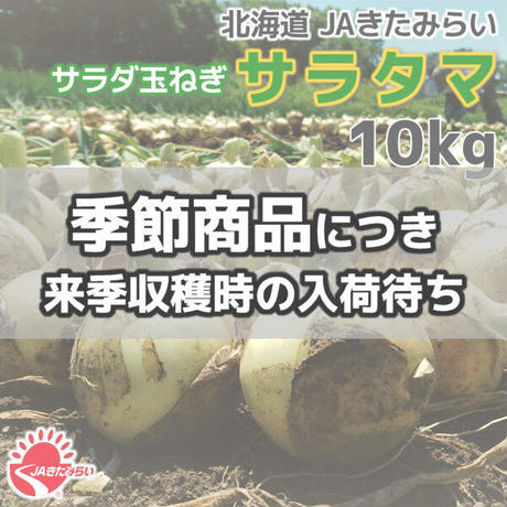 JAきたみらい サラダ玉ねぎ「サラタマ」 10kg【北海道 北見産】