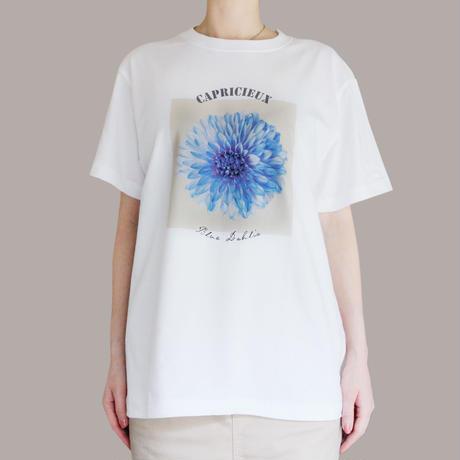 Capricieux Tシャツ