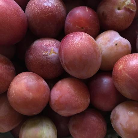 桃とすもも  特大サイズ(450g)