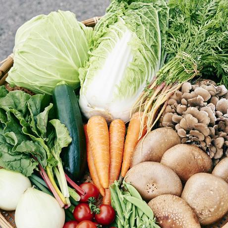 奥出雲の旬!新鮮野菜の詰め合わせ