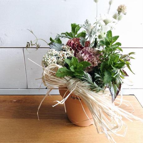 母の日ギフト 植木鉢のアレンジメント