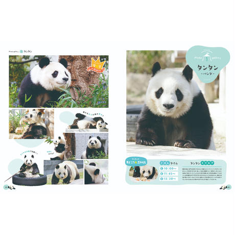 【数量限定再販】王子動物園70周年記念写真特集(A4全144P、フルカラー)