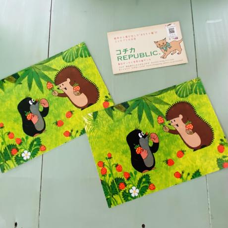 『いちごとはりねずみ』 チェコアニメ クルテク ポストカード