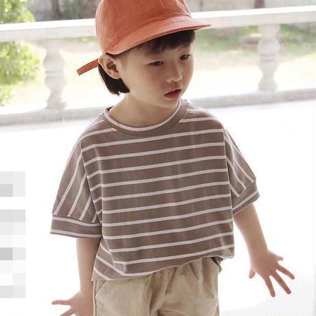 半袖ボーダーTシャツ (トレンドベージュカラー)