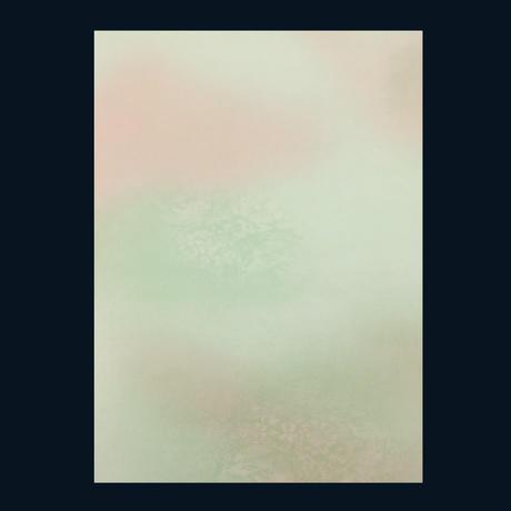 半懐紙・半紙判 花恋(かれん) 50枚入(5色各10枚)