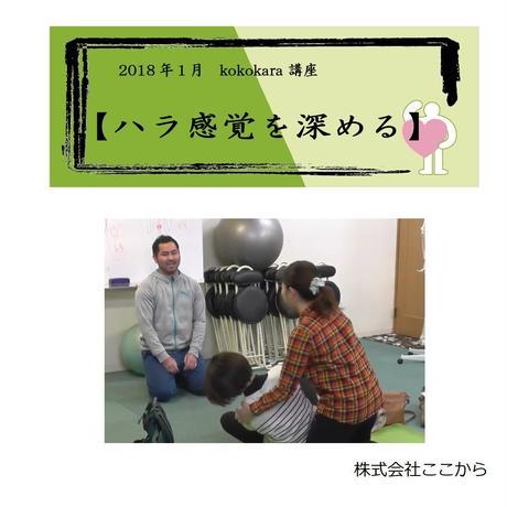 ハラ感覚を深める(2018年1月kokokara講座)☆