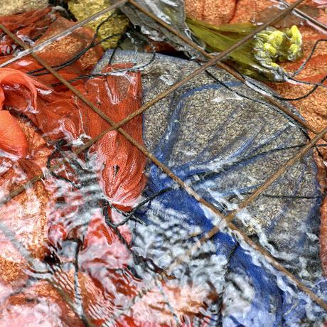自然栽培 ササニシキ  -白米-  5kg