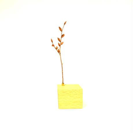 落ち葉のステージ キューブ